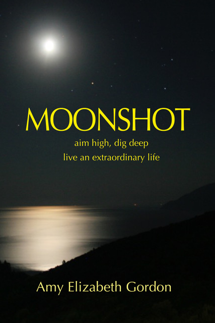 Moonshot aim high, dive deep, live an extraordinary life